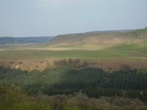 Viewpoint at Newton
